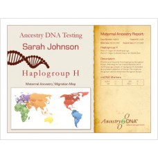 Maternal Lineage Test